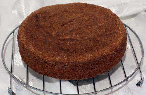 рецепт торта для собак мелких пород