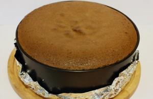 Шоколадный бисквит в форме