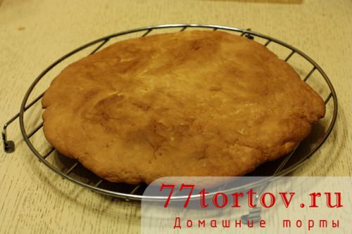 ryzhik-tort-11