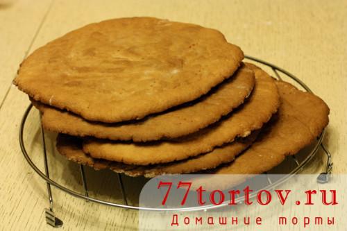 ryzhik-tort-12