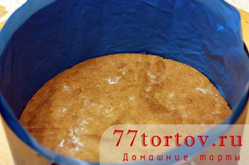ryzhik-tort-15