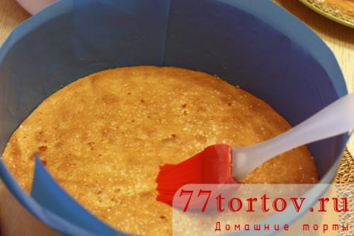tort-tiramisu-11