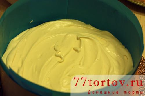 tort-tiramisu-12