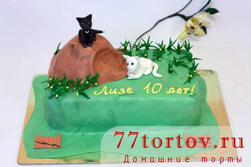 Торт коты Воители
